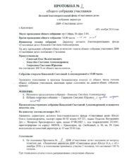 Решение о назначении директора, стр. 1