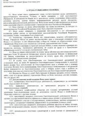 Устав фонда, стр. 4